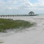  holbox