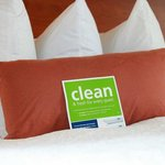 Clean & Fresh Pillows