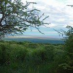  view from front deck of Lake Manyara Park
