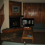 living area had wood burning fireplace.  we brought a saw to cut the wood and matches.