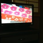 The larger flat screen TV in each room - showing beautiful material (all in Japanese)