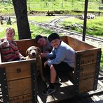 Honey Dog, the Smith's sweet lab, rode all the way up the mountain with the kids. :)