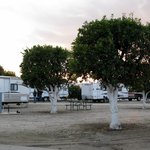 Bild från Orange Grove RV Park