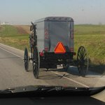  Amish buggy