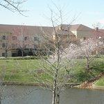 Foto van Courtyard by Marriott Paducah West