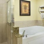  Bathroom in Guest Rooms