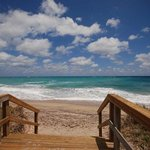 Palm Beach County Beaches