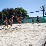Volly Ball Court At Barossa Backpackers