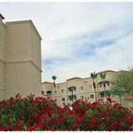  Exterior - Courtyard - Chandler