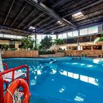  Swim in our Unique Indoor Pool