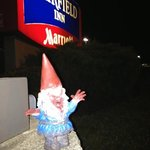  zombie gnome likes Fairfield!
