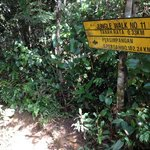  The signage which cannot be seen from the trail&#39;s entrance 50m away