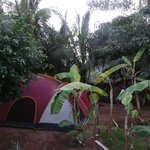  Zona de camping