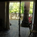  View from living room of citrus grove through pivot window