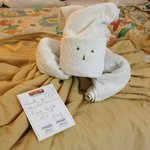 Awesome towel art!