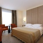  Superior Double Room Garden Elysee