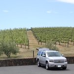 Sitting one the Napa/Sonoma County Line at Pride Mnt. Vineyard