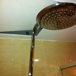  Shower head stuck in the ceiling