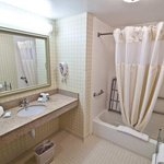  Accessible Guest Room Bathroom