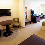  King Suite Room Features