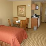  Country Inn &amp; Suites Roselle - Family Suite
