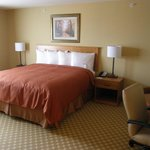 Country Inn & Suites Roselle - King Bed