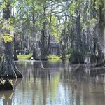  UL Cypress Lake