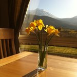 Spring morning at Breakfast