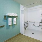  Sarasota Accessible Room Shower Area