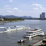  Rhine River
