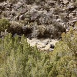 Manby Hot Springs