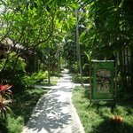 Pathway from beach to your villa