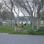 Saqr Park