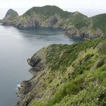 Cape Brett Walkway