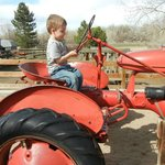 "Loved ""driving"" the tractor"