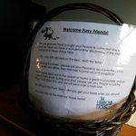welcome basket for dogs