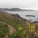The always-invigorating Mendocino Headlands