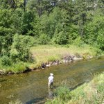 Trout fishing in Spearfish Canyon