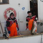 Local cod fishermen