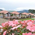  Holiday Heaven Munnar - Villas