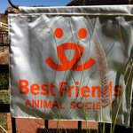 Best Friends Animal Society is nearby- Holiday Inn Express is the place to stay!