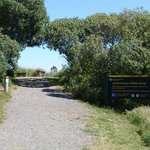 Ahuriri Estuary Walk