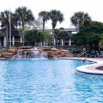 Palm Coast Pool