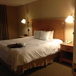 Hampton Inn & Suites Atlanta/Duluth/Gwinnett County照片