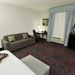 Foto de Hampton Inn & Suites Winnie