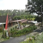  Welcome to Pondok Pitaya: Hotel Surfing and Yoga