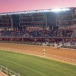 Nad Al Sheba Racecourse