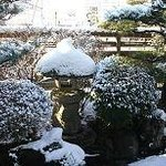The Japanese Garden in winter