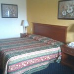  Red Carpet Inn South Holland IL Queen bed