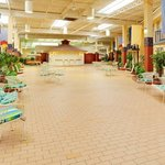 Garden Plaza Kingston Indoor Garden Courtyard